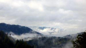 fog SC mountains