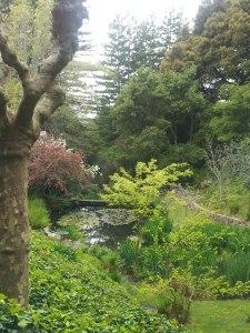 Bonny doon garden