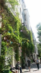 Flag vines