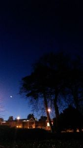 sandyford moon